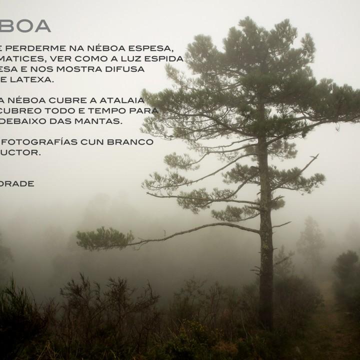 Néboa - Niebla